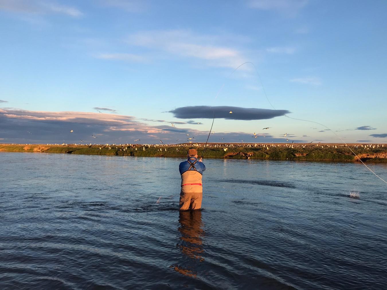 Rio Grande Fishing Report La Villa jan 6-13c